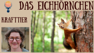 Das Krafttier Eichhörnchen
